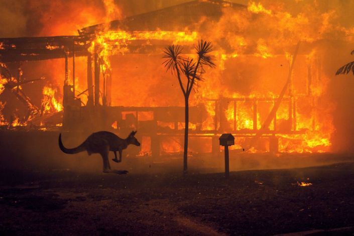 A kangaroo rushes past a burning house in Lake Conjola, Australia, on Tuesday, Dec. 31 2019.