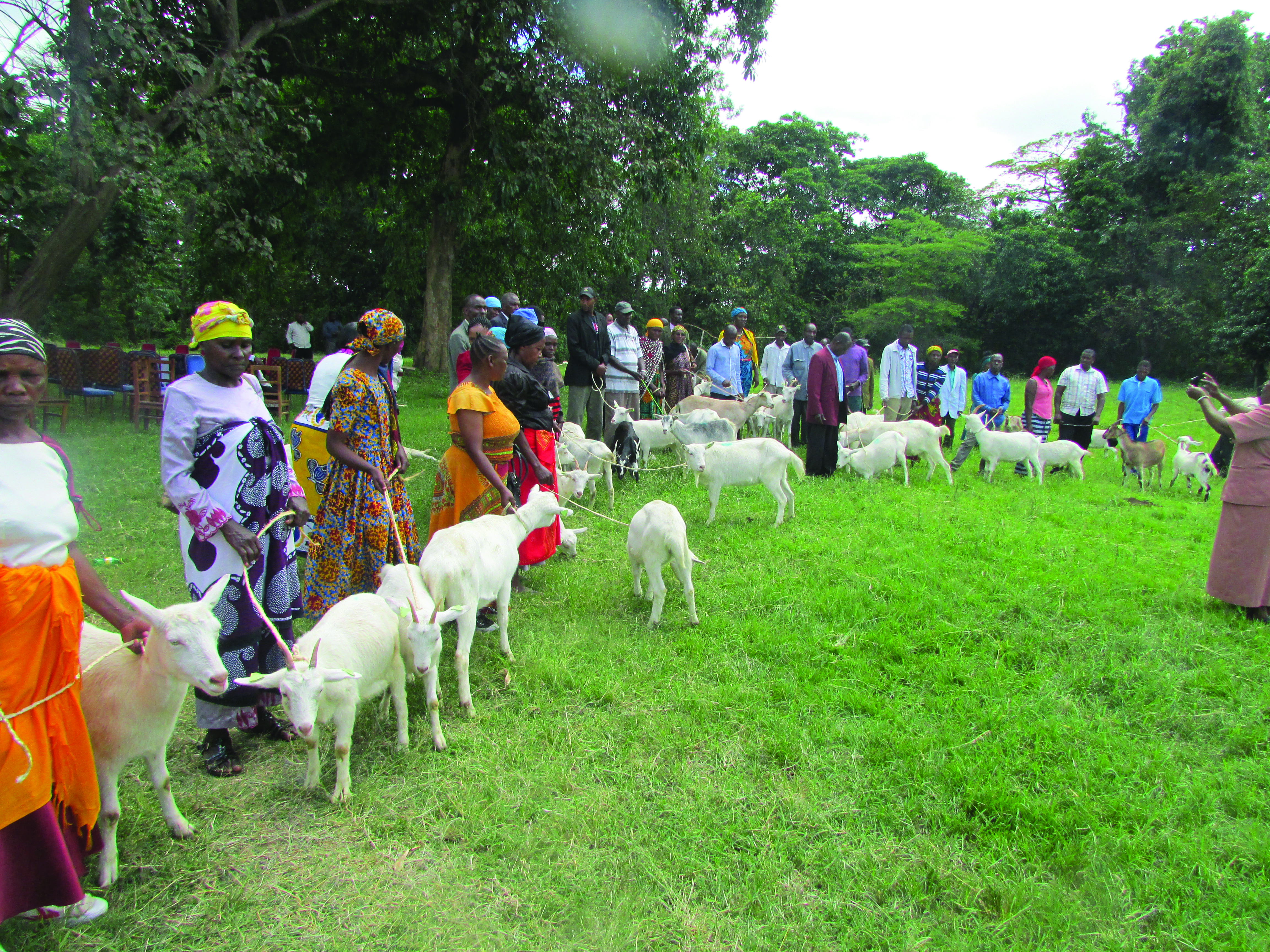 Women Empowered through Animal Husbandry Training