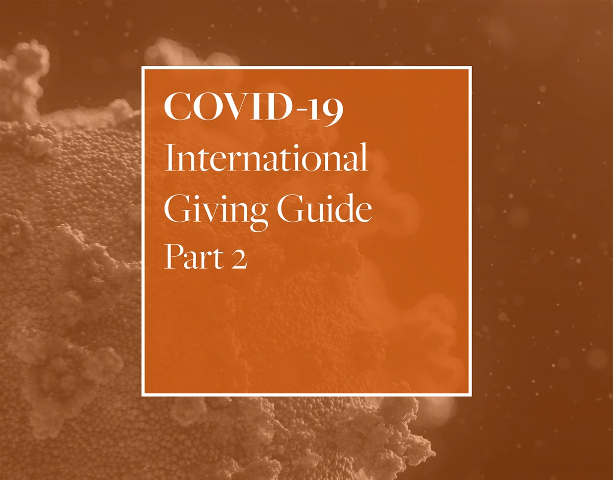 COVID-19 International Giving Guide Part 2