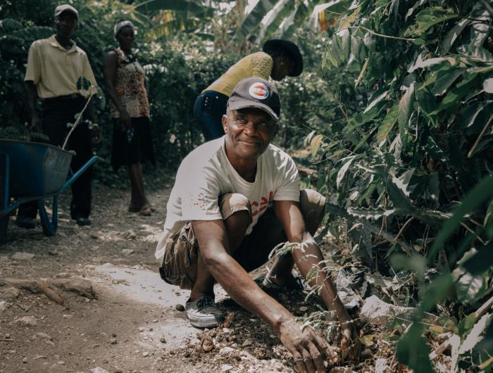Agriculture and reforestation projects in Haiti